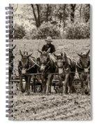 Team Of Eight Spiral Notebook