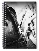 Team Work - Mules 2225-012-bw Spiral Notebook