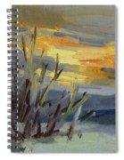 Teanaway Valley Winter Spiral Notebook