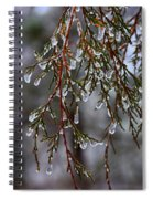 Tears Of Ice Spiral Notebook