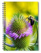 Teasel And Bee Spiral Notebook
