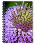 Teasel Spiral Notebook