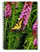 Technicolor Spiral Notebook