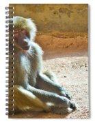 Teen Baboon Spiral Notebook