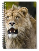 Teenage King Of The Beast Spiral Notebook