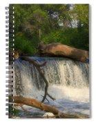Teeter Totter Log Spiral Notebook