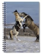 Teeth And Hooves Spiral Notebook