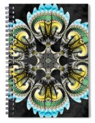 Temple Of The Ram Spiral Notebook