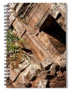 Temple Ruins 03 Spiral Notebook