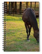 Tender Spring Grass Spiral Notebook
