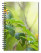 Tenderness Of Morning Spiral Notebook