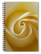 Tenderness White Rose 2 Spiral Notebook
