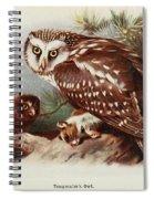 Tengmalms Owl Spiral Notebook
