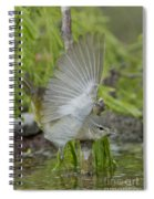 Tennessee Warbler Spiral Notebook