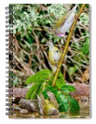 Tennessee Warblers Spiral Notebook