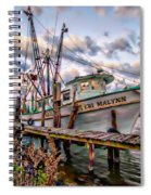 Teri Malynn On The Bon Secour Spiral Notebook