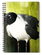 Tern Spiral Notebook