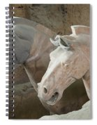 Terracotta Warrior Horses, China Spiral Notebook