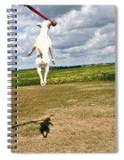 Terrier Ball Ballet Spiral Notebook