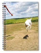 Terrier Levitation Spiral Notebook