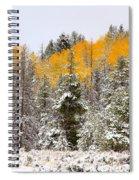 Teton Aspens Spiral Notebook