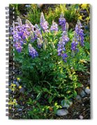 Teton Widflowers  Spiral Notebook