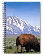 Tetons Buffalo Range Spiral Notebook