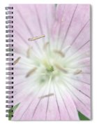 Texas Baby Blue Eyes Nemophila Phacelioides Spiral Notebook