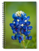 Texas Blue Spiral Notebook