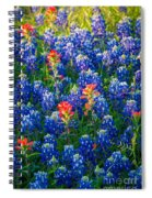 Texas Colors Spiral Notebook