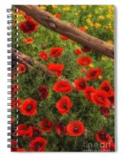 Texas Hill Country Wildflowers Spiral Notebook