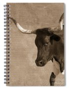 Texas Longhorn #6 Spiral Notebook