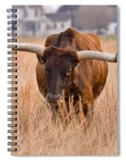 Texas Longhorn Spiral Notebook