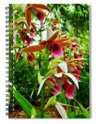 Texas Orchids Spiral Notebook