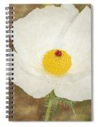 Texas Prickly Poppy Wildflower Spiral Notebook
