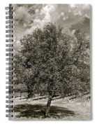 Texas Winery Tree And Vineyard Spiral Notebook