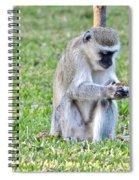 Texting Monkey Spiral Notebook