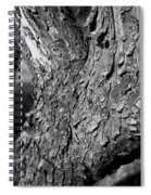 Texture In The Trees Spiral Notebook