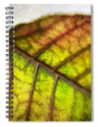Textured Leaf Abstract Spiral Notebook