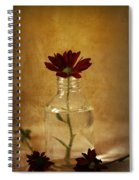 Textured Red Spiral Notebook