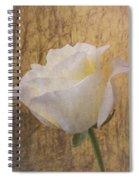Textured Rose Spiral Notebook