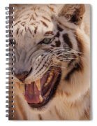 Textured Tiger Spiral Notebook