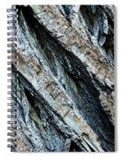 Textured Tree Bark Spiral Notebook