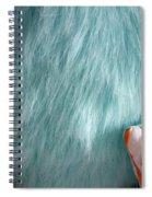 Textures 2 Spiral Notebook