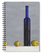 The Blue Bottle By David I. Jackson Spiral Notebook