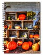 Thanksgiving Pumpkin Display No. 1 Spiral Notebook