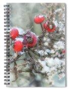 That First Snowfall Spiral Notebook