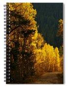 The Golden Road Spiral Notebook