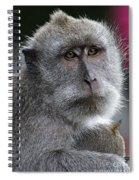 That Look 2 Spiral Notebook