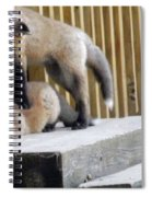 That's Not Helping - Two Fox Kits Spiral Notebook
